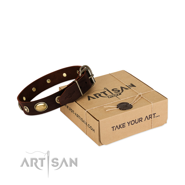Strong traditional buckle on natural leather dog collar for your four-legged friend