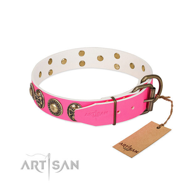 Rust-proof buckle on easy wearing dog collar
