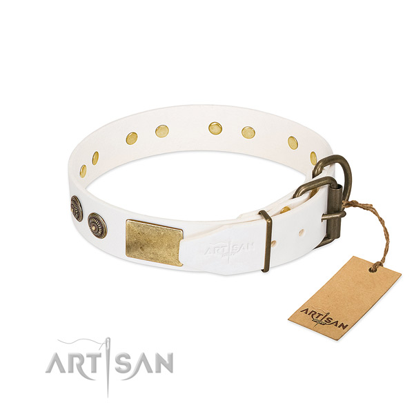 Corrosion resistant hardware on full grain natural leather collar for basic training your canine