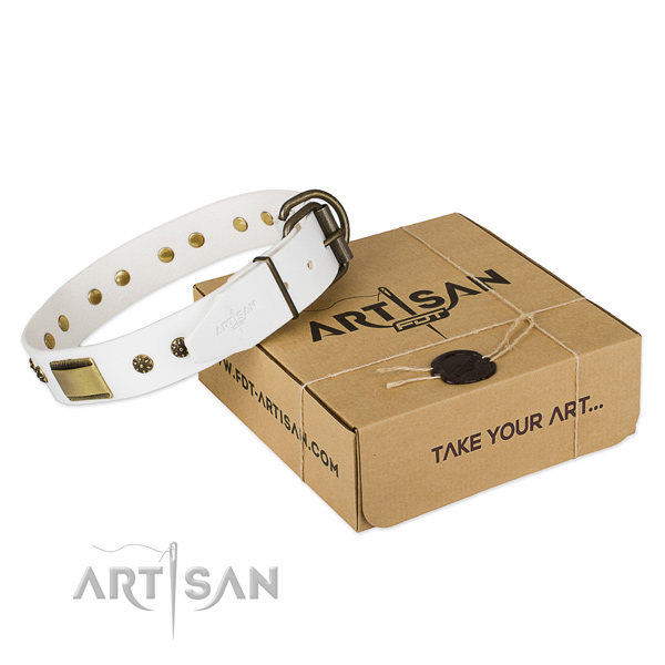 Amazing genuine leather collar for your beautiful pet