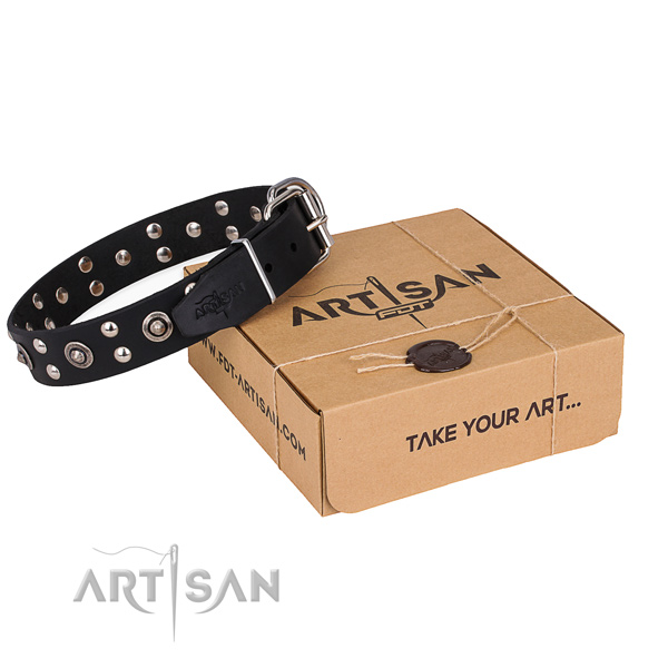 Basic training dog collar with Impressive durable decorations