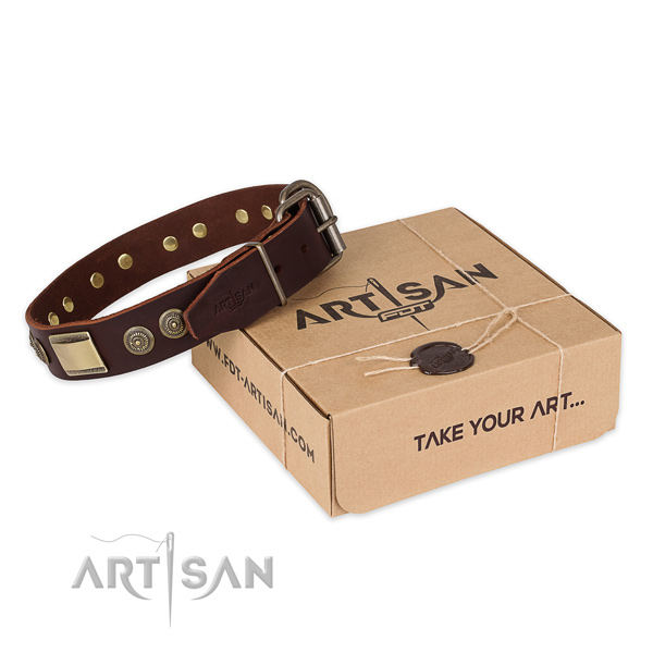 Durable D-ring on leather dog collar for easy wearing