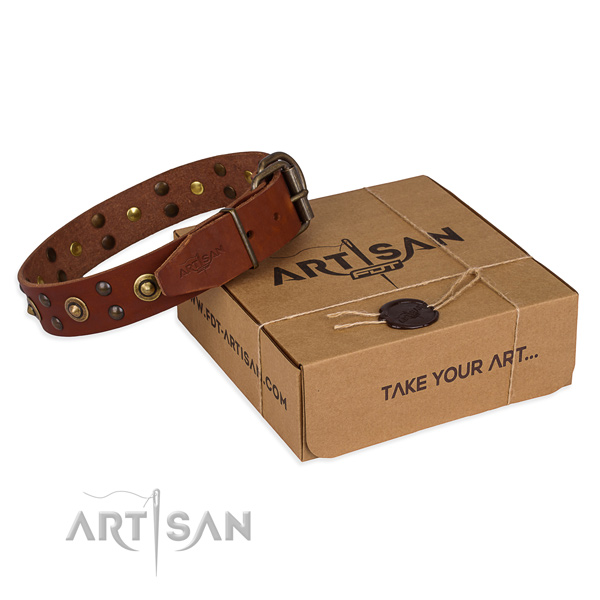 Corrosion resistant traditional buckle on leather collar for your handsome canine