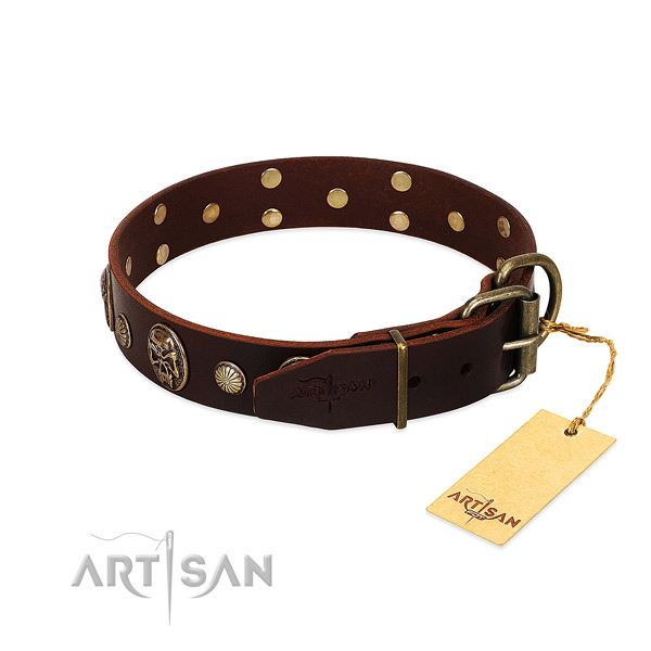 Durable adornments on walking dog collar
