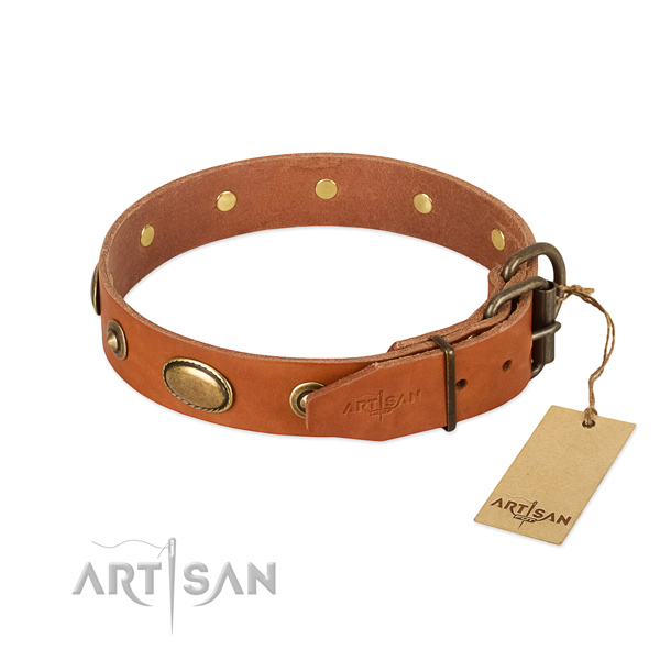 Strong studs on full grain natural leather dog collar for your dog