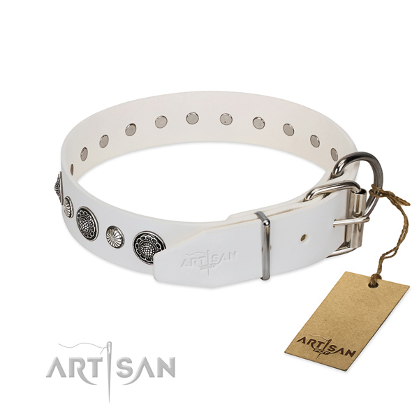 Quality leather dog collar with corrosion resistant buckle