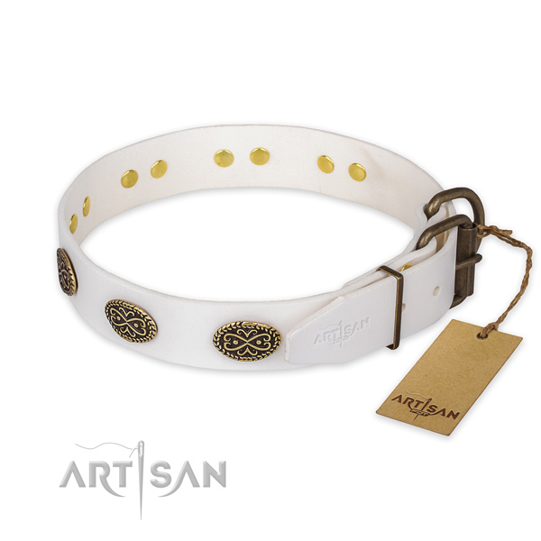 Durable fittings on leather collar for fancy walking your pet