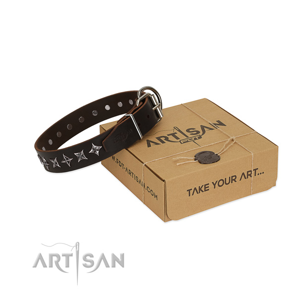 Daily walking dog collar of best quality full grain natural leather with adornments