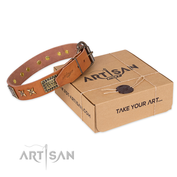 Strong buckle on full grain natural leather collar for your attractive dog