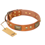 """Saucy Nature"" FDT Artisan Tan Leather Doberman Collar with Old Bronze Look Plates and Skulls"