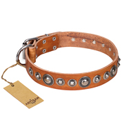 """Daily Chic"" FDT Artisan Tan Leather Doberman Collar with Decorations"