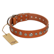 """Gorgeous Roundie"" FDT Artisan Tan Leather Doberman Collar with Chrome-plated Circles"