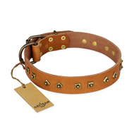 """Autumn Story"" FDT Artisan Leather Doberman Collar with Old Bronze Look Studs"