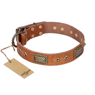 """Catchy Look"" FDT Artisan Decorated Tan Leather Doberman Collar"