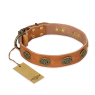 """Magic Amulet"" FDT Artisan Tan Leather Doberman Collar with Oval Studs"