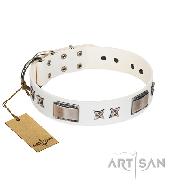 Trendy dog collar of full grain genuine leather