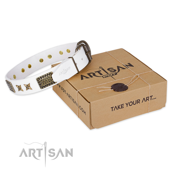 Durable traditional buckle on leather collar for your beautiful pet
