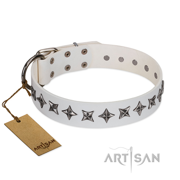 Comfy wearing dog collar of reliable full grain leather with decorations