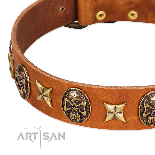 Corrosion resistant studs on full grain leather dog collar for your canine