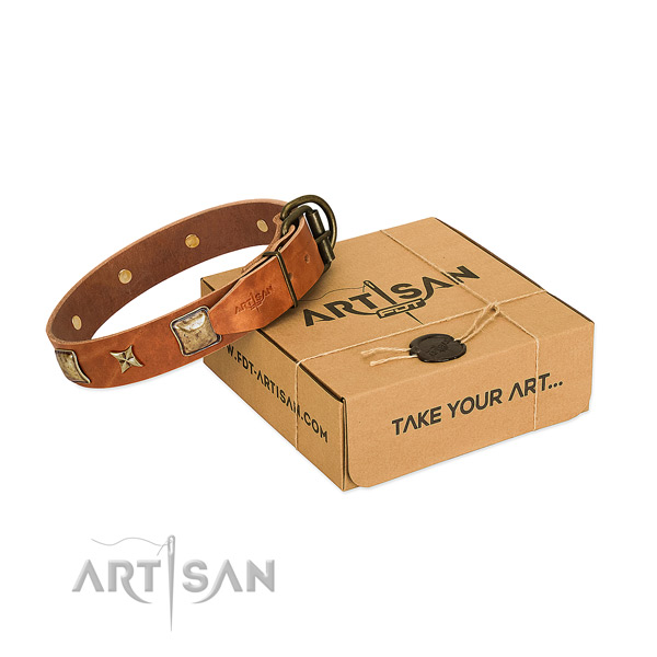 Exceptional genuine leather collar for your beautiful four-legged friend