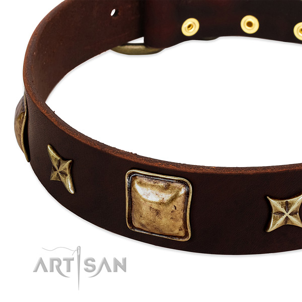 Strong fittings on full grain leather dog collar for your canine