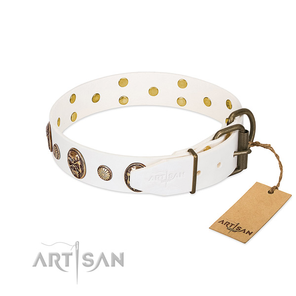 Corrosion proof fittings on full grain genuine leather collar for basic training your doggie