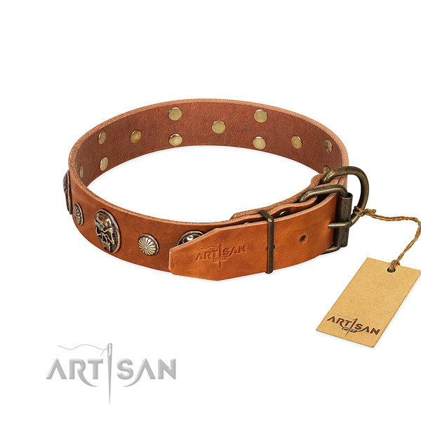 Rust-proof D-ring on full grain leather collar for fancy walking your doggie