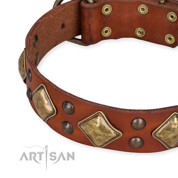 Genuine leather collar with reliable traditional buckle for your impressive pet