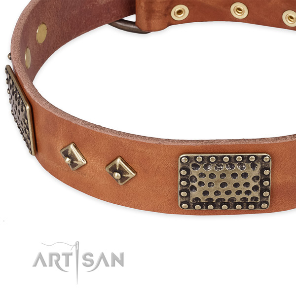 Rust-proof embellishments on full grain genuine leather dog collar for your canine