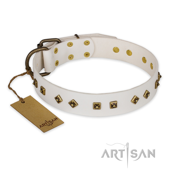 Stylish leather dog collar with strong hardware