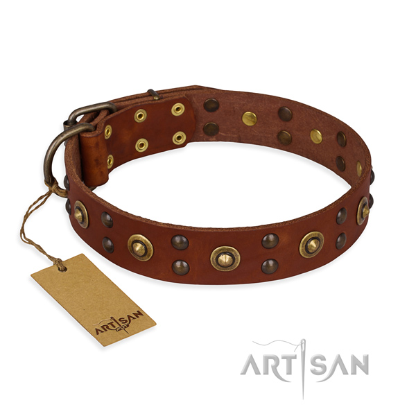 Adorned genuine leather dog collar with reliable fittings