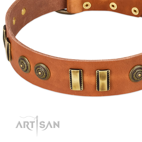 Corrosion proof decorations on full grain genuine leather dog collar for your canine