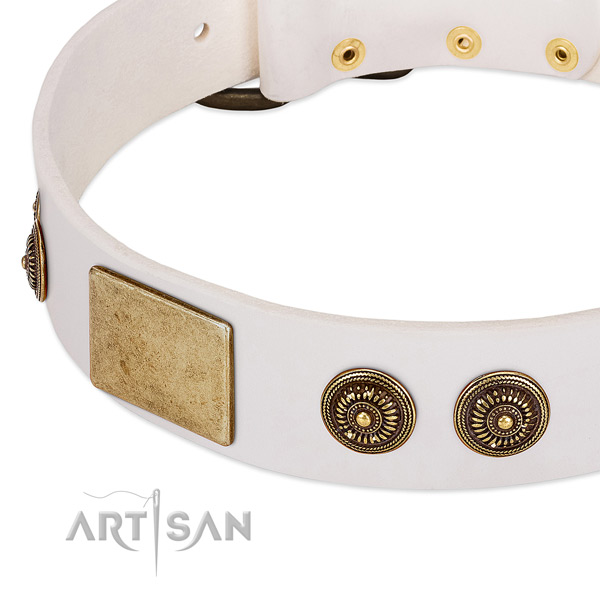 Significant dog collar made for your lovely dog