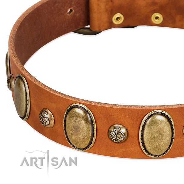 Natural leather dog collar with trendy decorations
