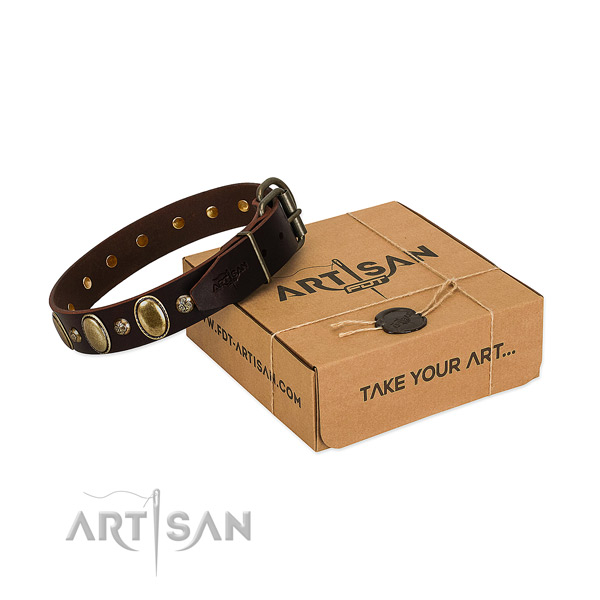 Awesome full grain leather dog collar with durable traditional buckle