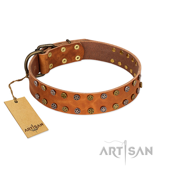 Everyday walking soft genuine leather dog collar with adornments