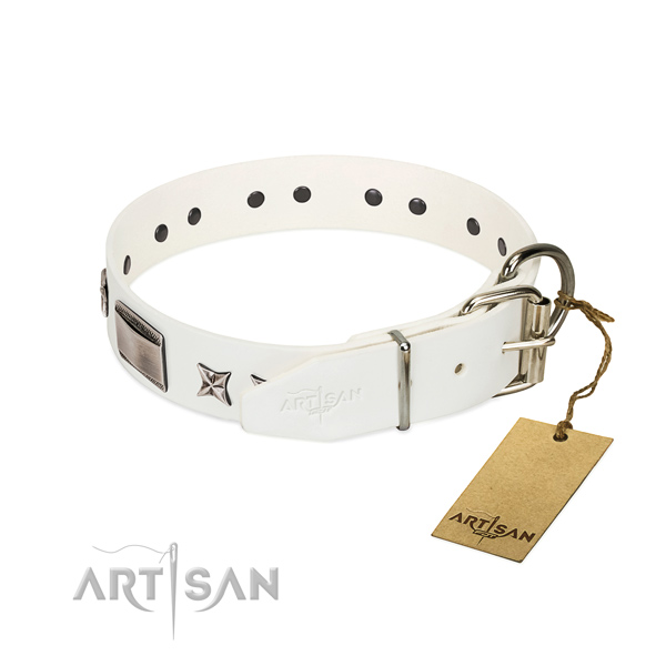 Adorned collar of full grain natural leather for your handsome four-legged friend