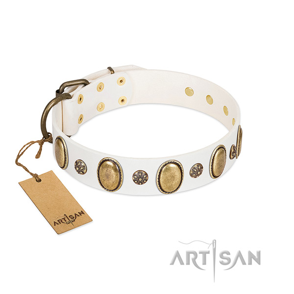 Everyday use soft to touch leather dog collar with embellishments