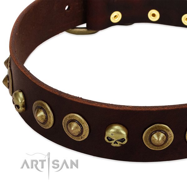 Designer decorations on natural leather collar for your four-legged friend