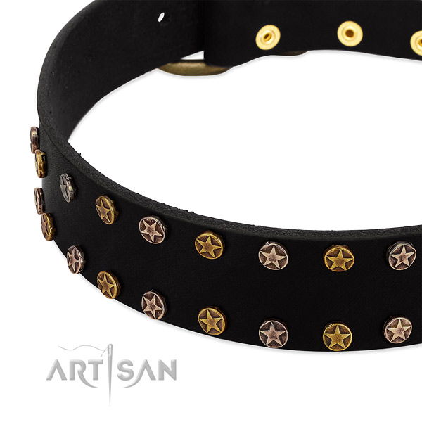 Trendy embellishments on full grain leather collar for your doggie