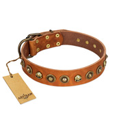 """Prez of the Pack"" FDT Artisan Tan Leather Doberman Collar with Skulls and Brooches"