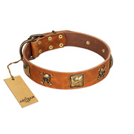 """Knights Templar"" FDT Artisan Tan Leather Doberman Collar with Skulls and Crossbones Combined with Squares"