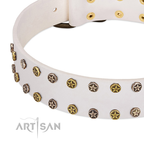 Top notch adornments on genuine leather collar for your dog