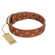 """Ancient Symbol"" Trendy FDT Artisan Tan Leather Doberman Collar with Silver- and Gold-Like Studs"