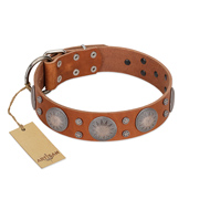 """Far Star"" FDT Artisan Tan Leather Doberman Collar with Engraved Studs"