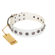 """Solar Energy"" FDT Artisan White Leather Doberman Collar with Silver-like Studs and Medallions"