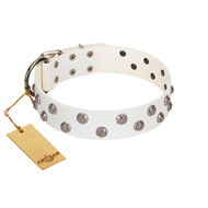 """Wild Flora"" FDT Artisan White Leather Doberman Collar with Silver-like Engraved Studs"