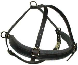 Doberman leather dog harness(handmade leather dog harness)