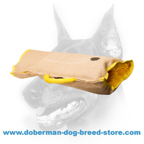Doberman dog training sleeve with convenient outside and inside handles
