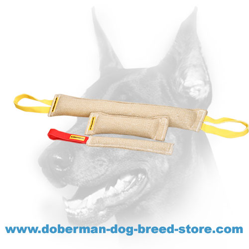 Doberman Dog training set of reliable natural jute